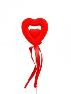 Kalp İkiz