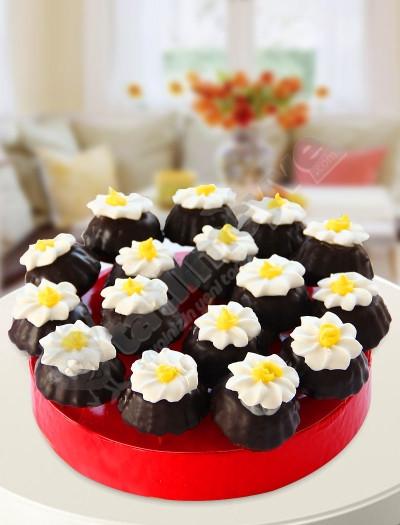 Daisy Kek Çiçeği