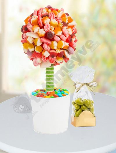 Jelibon Ağacı Ve Çikolata Paketi