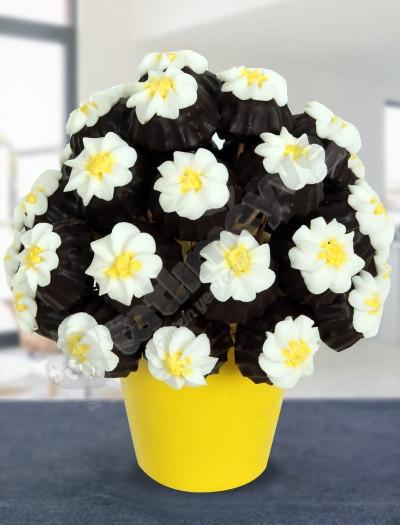 Yellow Daisy - Kurabiye Çiçekleri